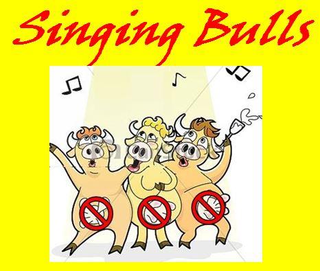 singing bulls